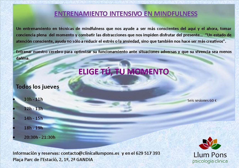 Entrenamiento_Intensivo_Mindfulness